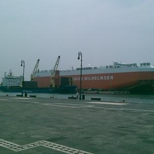 Sellos de seguridad en Veracruz para exportaciones internacionales