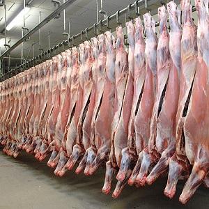 Exportación de Carne Estadounidense Podría Incrementarse