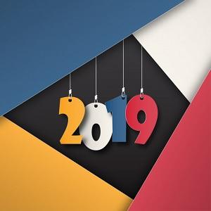 Protectoseal Desea un Feliz Año 2019