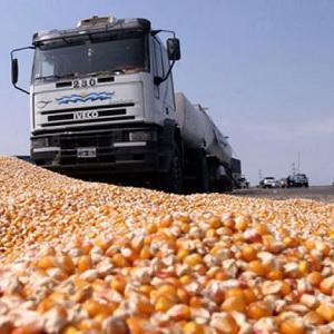 Exportaciones Brasileñas de Maíz Suben