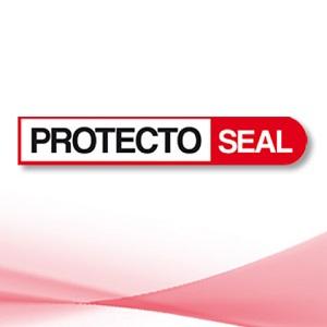 Protectoseal Termina el Año con Bendiciones y Optimismo