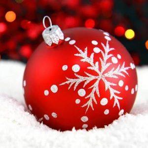 Protectoseal Desea Felices Fiestas y Feliz Año 2021